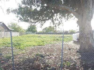 Stockton Residential Lots & Land For Sale: 3821 Odell Avenue