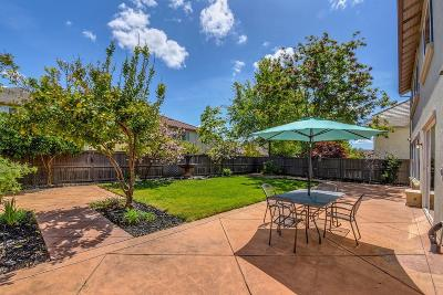 Rancho Cordova Single Family Home For Sale: 4171 Tulip Park Way