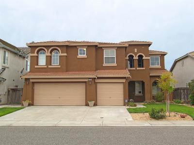 Modesto Single Family Home For Sale: 4121 Lamarck Avenue