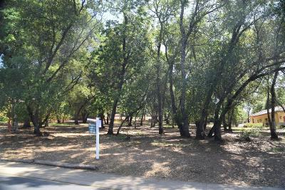 El Dorado Hills Residential Lots & Land For Sale: 3835 Greenview Drive