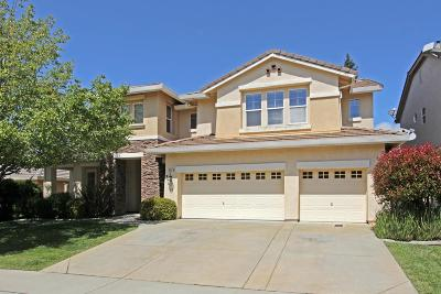 Rocklin Single Family Home For Sale: 2122 Big Sky Drive