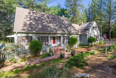 Single Family Home For Sale: 3915 Stope Drive