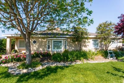 Modesto Single Family Home For Sale: 1107 Moffett Road
