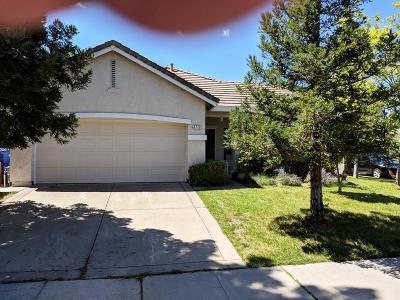 Sacramento Single Family Home For Sale: 3773 Poppy Hill Way