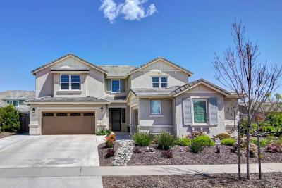 Elk Grove Single Family Home For Sale: 9911 Lousada Drive