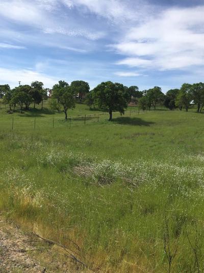 Copperopolis Residential Lots & Land For Sale: 3496 Little John Road