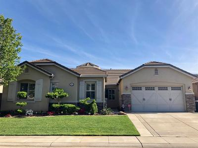 Elk Grove Single Family Home For Sale: 7516 Cordially Way