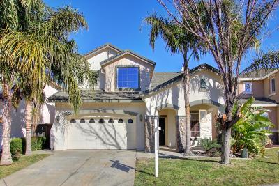 Sacramento Single Family Home For Sale: 300 Mahonia Circle