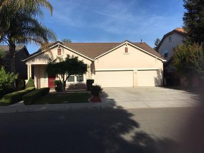 Denair Single Family Home For Sale: 2609 Big Tree Avenue