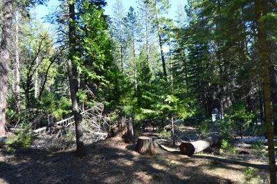Grizzly Flats Residential Lots & Land For Sale: 4867 Sciaroni Road