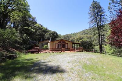 Sutter Creek Single Family Home For Sale: 16000 Sutter Creek Road
