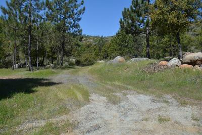 Sonora Residential Lots & Land For Sale: Lyons Bald Mountain Road