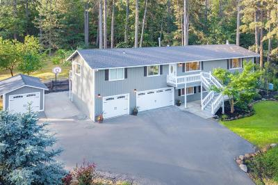 Colfax Single Family Home For Sale: 510 Hi Pines Ranch Road