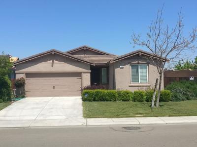 Manteca Single Family Home For Sale: 1171 Alba Street