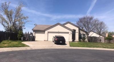Elk Grove Single Family Home For Sale: 8815 Kestrel Court