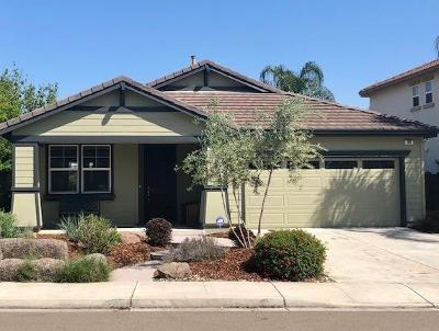 Tracy Single Family Home For Sale: 391 Citrus Way