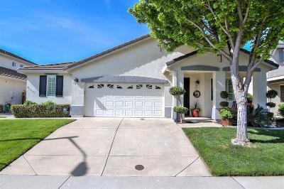 Roseville Single Family Home For Sale: 1961 Ambridge Drive