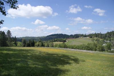 El Dorado County Commercial Lots & Land For Sale: Pleasant Valley Road