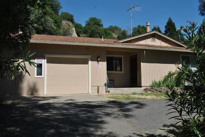 Placerville Single Family Home For Sale: 1131 Breglia Way