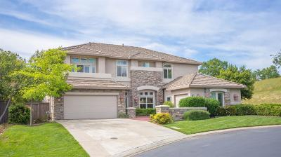 El Dorado Hills Single Family Home For Sale: 131 Gage Court
