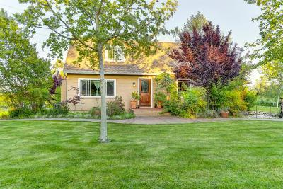Sacramento Single Family Home For Sale: 9101 McCoy Avenue