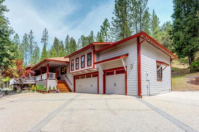 Nevada City Single Family Home For Sale: 12384 Discovery Way