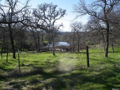 Pilot Hill CA Residential Lots & Land For Sale: $1,700,000