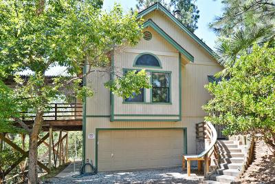 Colfax Single Family Home For Sale: 1145 Sierra Dawn Lane