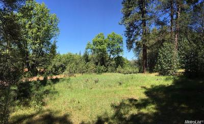 Amador County Residential Lots & Land For Sale: Tabeau Road
