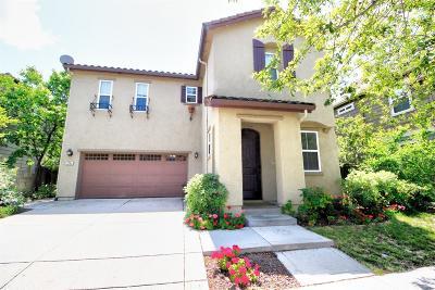 Woodland Single Family Home For Sale: 2744 Nicolson Circle