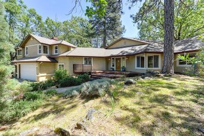Meadow Vista Single Family Home For Sale: 3175 Sugar Ridge Road