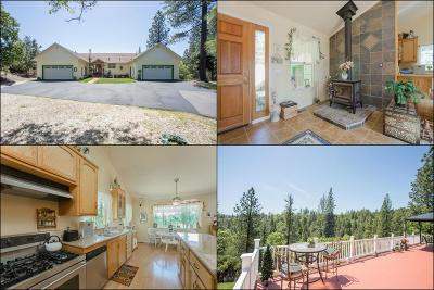 Placerville Single Family Home For Sale: 4095 Timber Lane