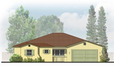 Elk Grove Single Family Home For Sale: 8573 New Mills Court
