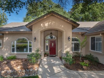 Cameron Park Single Family Home For Sale: 3172 Catawba Drive