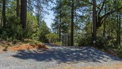 Foresthill Residential Lots & Land For Sale: 6781 Nugget Drive