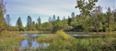 Nevada County Residential Lots & Land For Sale: 11076 Houghton Ranch Road