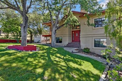 Valley Springs Single Family Home For Sale: 569 Spyglass