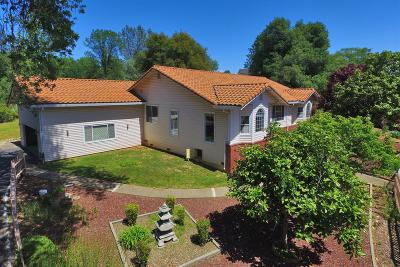 Placerville Single Family Home For Sale: 4101 Bestafa Court