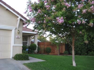 Rio Linda Single Family Home For Sale: 503 Arlingdale