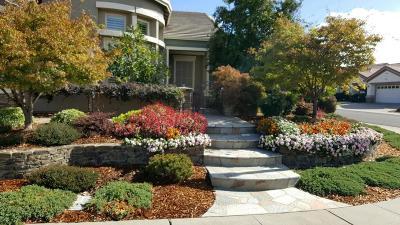Lincoln Single Family Home For Sale: 1328 Magnolia Lane