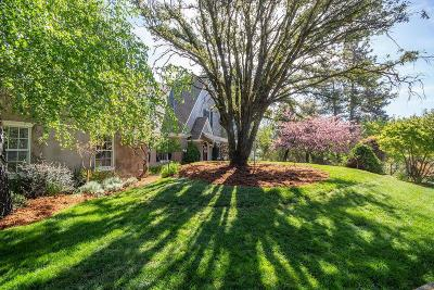 Colfax Single Family Home For Sale: 911 Hope Hill Ct.