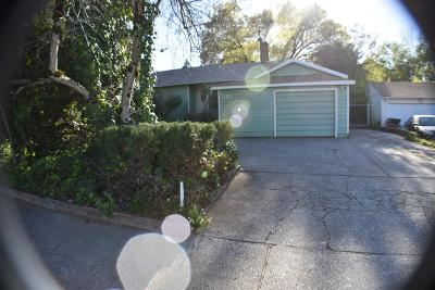 Grass Valley Single Family Home For Sale: 310 Buena Vista Street
