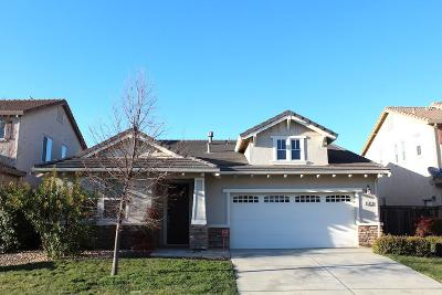 Elk Grove Single Family Home For Sale: 8141 Suarez Way