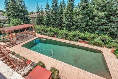 Rancho Murieta Single Family Home For Sale: 15250 De La Pena Circle