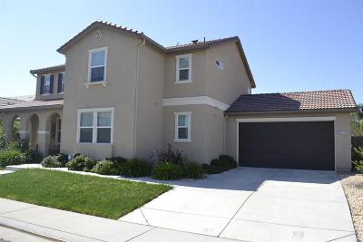 Elk Grove Single Family Home For Sale: 9044 Keilana Court