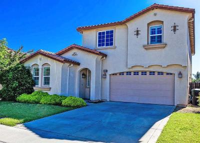 Modesto Single Family Home For Sale: 4228 Gabriel Way