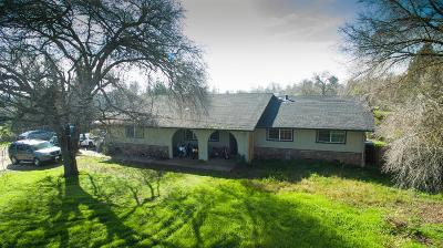 Elk Grove Single Family Home For Sale: 10560 Sheldon Road