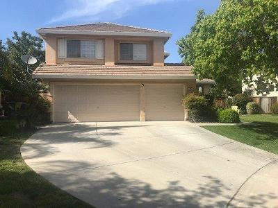 Tracy Single Family Home For Sale: 785 Oneil Court