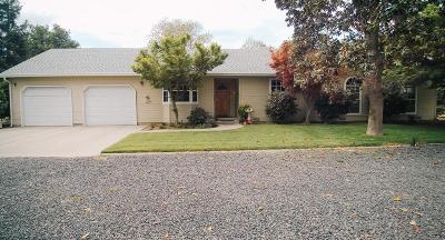 Escalon Single Family Home Active Rel. Clause: 22029 Brennan Road