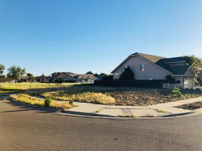 Modesto Residential Lots & Land For Sale: 1958 River Tree Lane